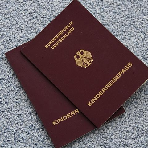 Personalausweis, Reisepass